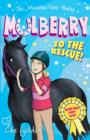 The Meadow Vale Ponies: Mulberry to the Rescue! - Book