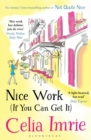 Nice Work If You Can Get it - Book
