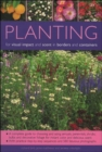 Planting for Visual Impact and Scent in Borders and Containers : A Complete Guide to Choosing and Using Annuals, Perennials, Shrubs, Bulbs and Decorative Foliage, with Practical Step-by-Step Sequences - Book