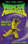 The Big City Bust-Up - Book