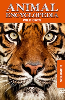 Animal Encyclopedia: Volume 3 - Wild Cats, DVD