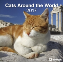 2017 CATS AROUND THE WORLD 30 X 30 GRID,
