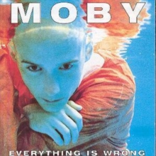 Everything Is Wrong, CD / Album