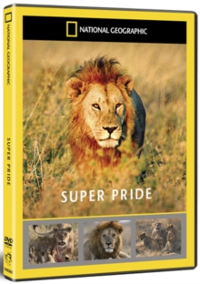 National Geographic: Super Pride - Africa's Largest Lion Pride, DVD