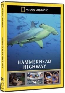 National Geographic: Hammerhead Highway, DVD