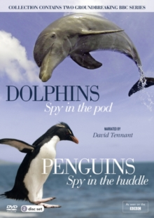 Dolphins: Spy in the Pod/Penguins: Spy in the Huddle, DVD