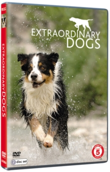 Extraordinary Dogs, DVD  DVD