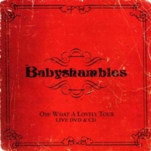 Oh What a Lovely Tour - Babyshambles Live [cd + Dvd], CD / Album