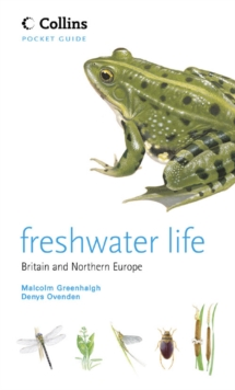 Freshwater Life, Paperback Book