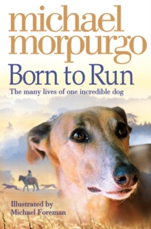 Born to Run, Paperback