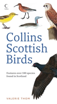 Collins Scottish Birds, Paperback
