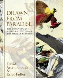 Drawn From Paradise: The Discovery, Art and Natural History of the BirdsOf Paradise, Hardback Book