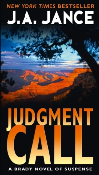 Judgment Call, Paperback