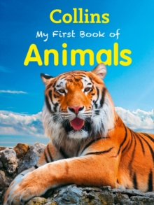 My First Book of Animals, Paperback Book