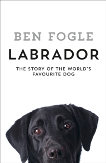 Labrador : The Story of the World's Favourite Dog, Hardback