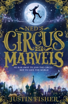 Ned's Circus of Marvels, Paperback Book