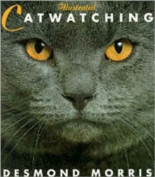 Illustrated Catwatching, Paperback Book