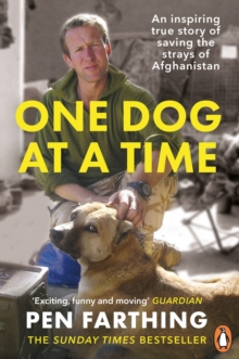 One Dog at a Time : Saving the Strays of Helmand - an Inspiring True Story, Paperback Book