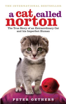A Cat Called Norton : The True Story of an Extraordinary Cat and His Imperfect Human, Paperback