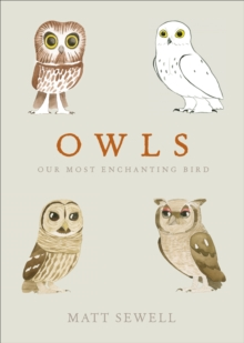 Owls : Our Most Enchanting Bird, Hardback