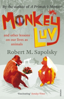 Monkeyluv : And Other Lessons in Our Lives as Animals, Paperback