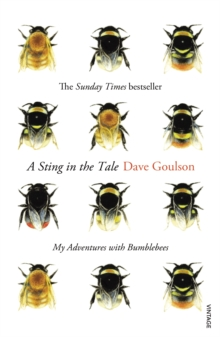 A Sting in the Tale, Paperback Book