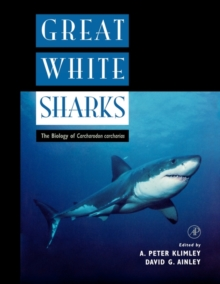 Great White Sharks : The Biology of Carcharodon Carcharias, Paperback