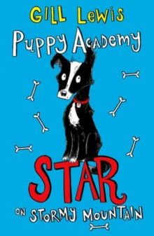 Puppy Academy: Star on Stormy Mountain, Paperback Book