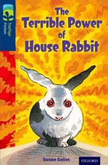 Oxford Reading Tree Treetops Fiction: Level 14 More Pack A: The Terrible Power of House Rabbit, Paperback Book