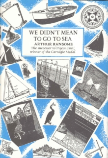 We Didn't Mean to Go to Sea, Hardback