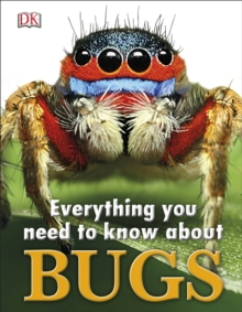 Everything You Need to Know About Bugs, Hardback