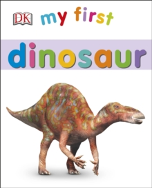 My First Dinosaur, Board book