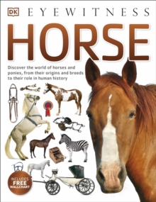 Horse, Paperback