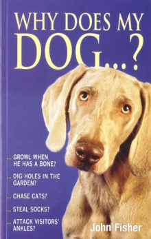 Why Does My Dog...?, Paperback