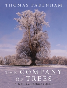 The Company of Trees : A Year in a Lifetime's Quest, Hardback