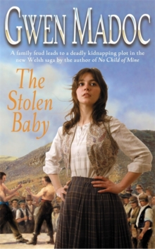 The Stolen Baby, Paperback