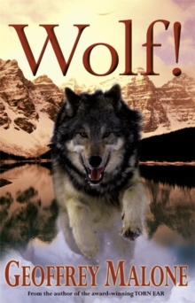 Wolf, Paperback Book
