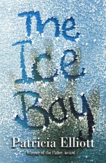 The Ice Boy, Paperback Book