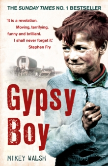 Gypsy Boy : One Boy's Struggle to Escape from a Secret World, Paperback