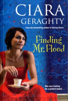 Finding Mr. Flood, Paperback