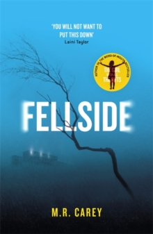 Fellside, Hardback