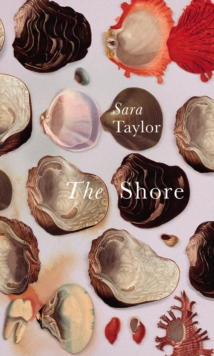 The Shore, Hardback Book