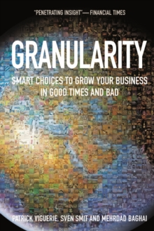 Granularity : Smart Choices to Grow Your Business in Good Times and Bad, Paperback