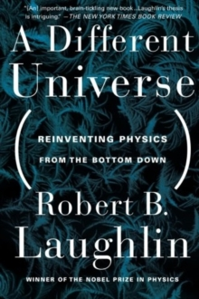A Different Universe : Reinventing Physics from the Bottom Down, Paperback