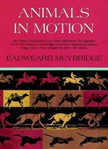 Animals in Motion, Paperback