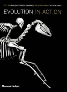 Evolution in Action : Natural History Through Spectacular Skeletons, Hardback