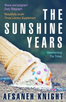 The Sunshine Years, Paperback