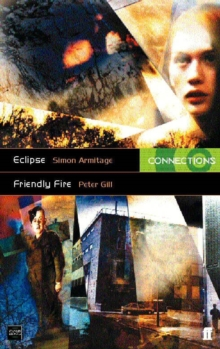 Friendly Fire : AND Friendly Fire, Paperback