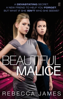 Beautiful Malice, Paperback
