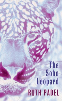 The Soho Leopard, Paperback